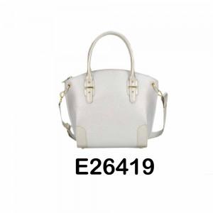 E26419