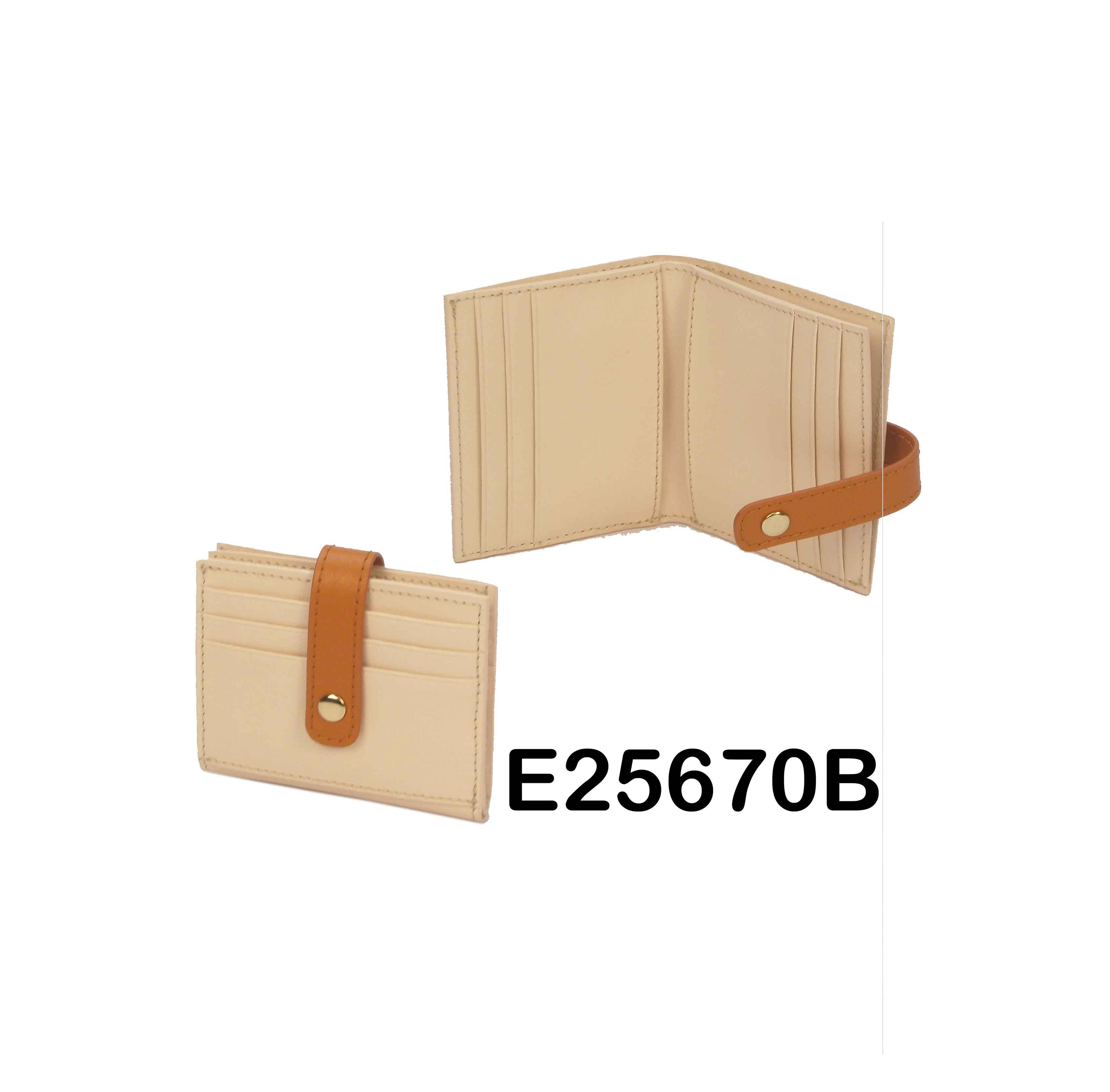 E25670B whole