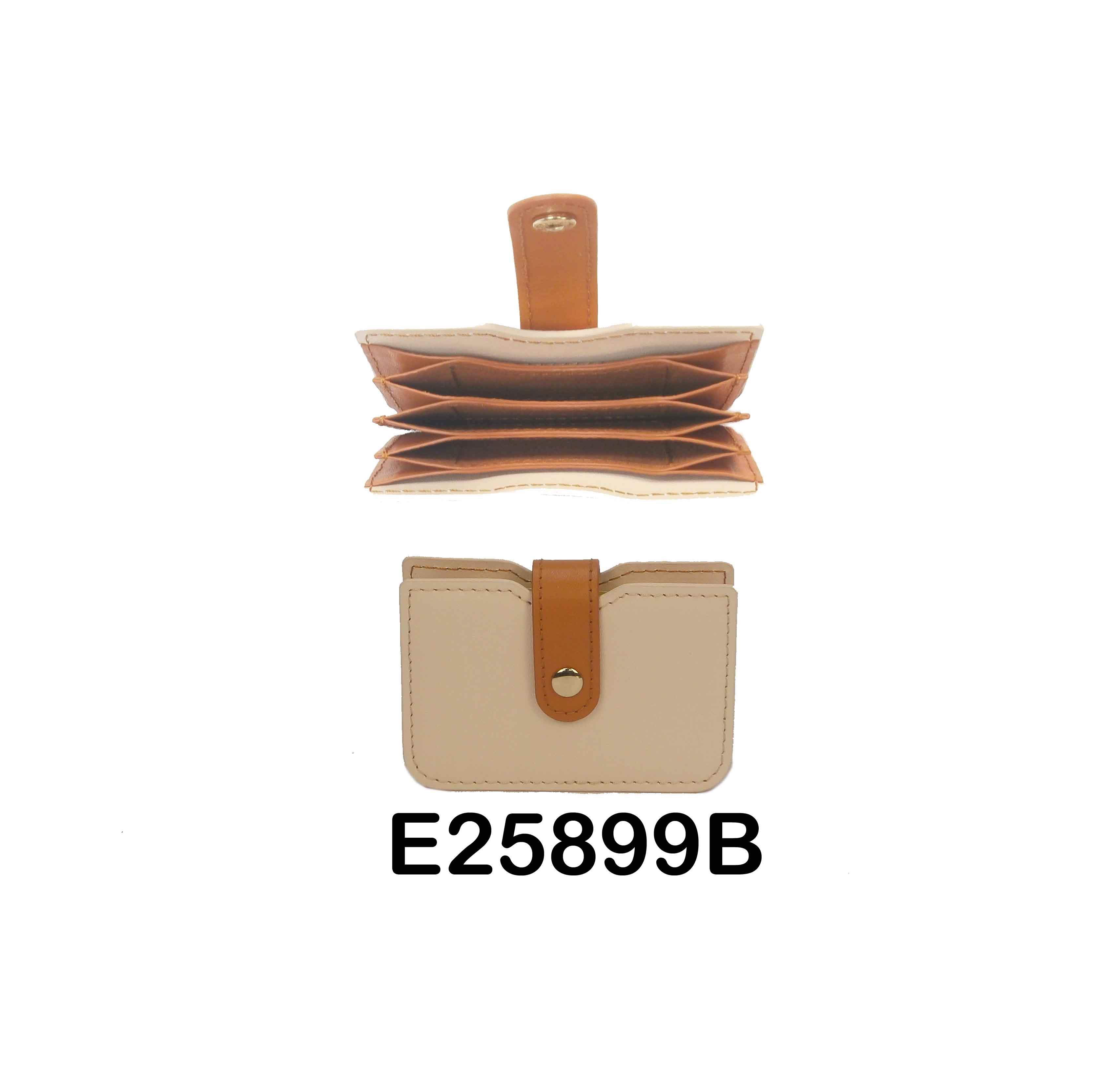 E25899B whole